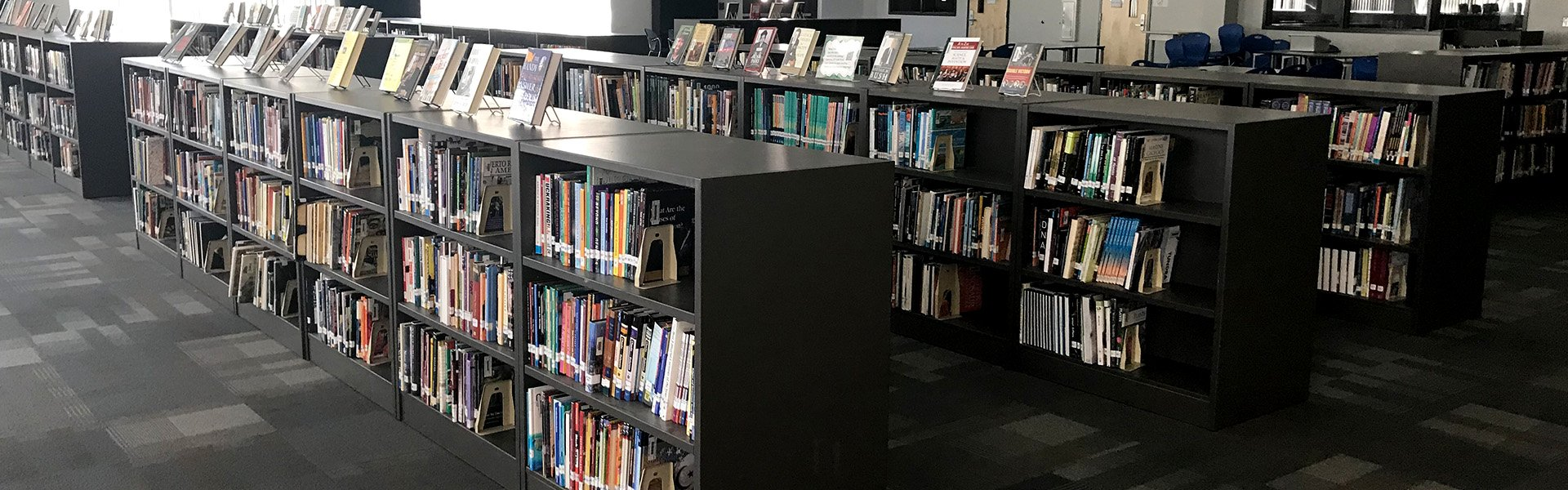 Media Center Bookcases 300